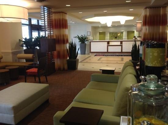 Hilton Garden Inn Boston/Waltham : great looking renovation