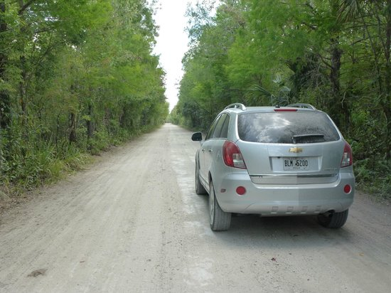 Fakahatchee Strand Preserve State Park & Boardwalk: Your car will get dusty
