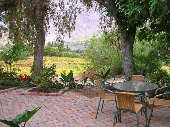 El Galpón Pisco Elqui: El Galpón patio