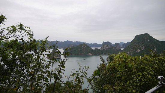 Poseidon Sail Private Charter Halong: Halong Bay View