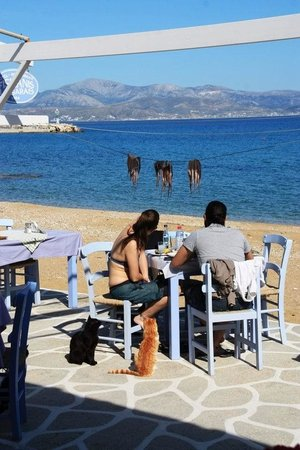Fisilanis Restaurant: octapus under the sun