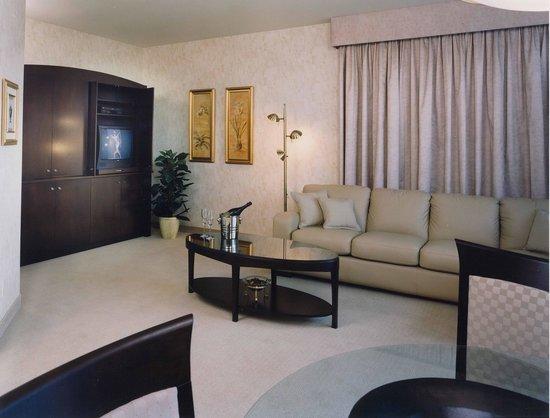 Hotel Castel & Spa Confort: Suite Contemporaine avec bain thérapeutique double