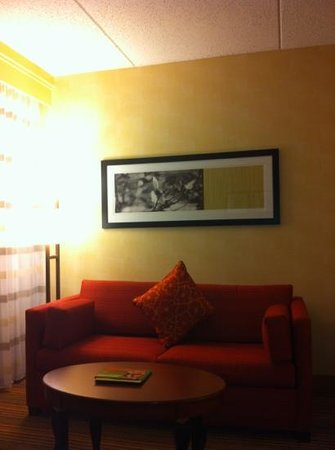 Courtyard by Marriott Chicago O'Hare: Comfy