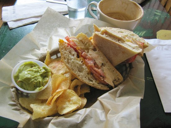 City on a Hill Coffee & Espresso: Yummy Chicken Tomato Cheese Lunch Special