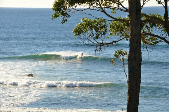 Mollymook Beach Waterfront: Surfing on Reef Break