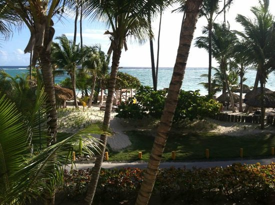Grand Palladium Palace Resort Spa & Casino: View from room window