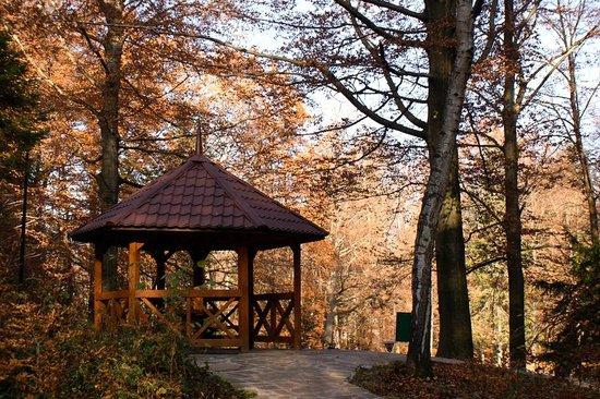 Gora Parkowa