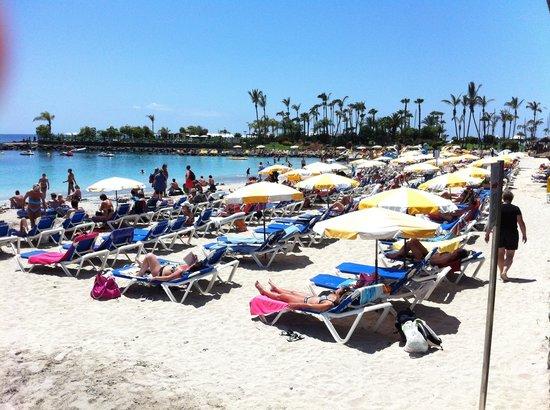 Club Gran Anfi: Anfi beach