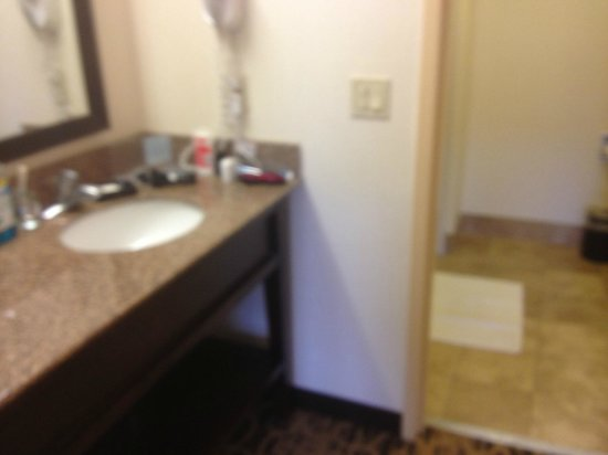 Hampton Inn and Suites Park City : Sink outside of the bathroom