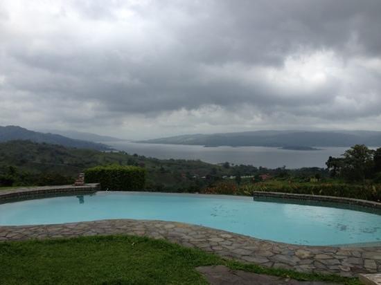 Nepenthe B&B: vue de la piscine