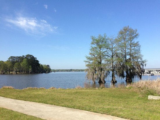 Lake Blackshear Resort and Golf Club : view of lake