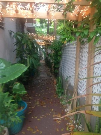 Coqui del Mar Guest House: Walkway leading to courtyard/patio