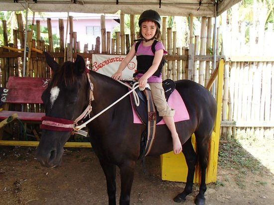 Being with Horses: Ready to Ride