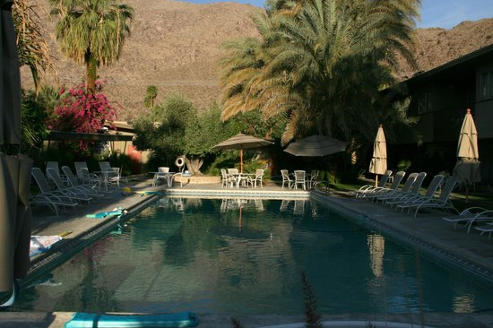 The Chase Hotel of Palm Springs: Early morning pool The Chase