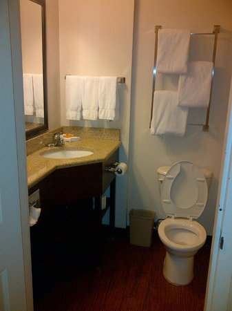 View Inn and Suites JFK: Bathroom