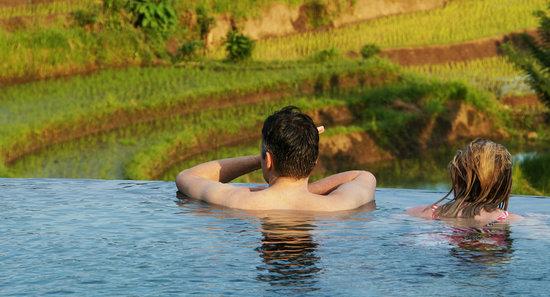 Samanvaya Pool
