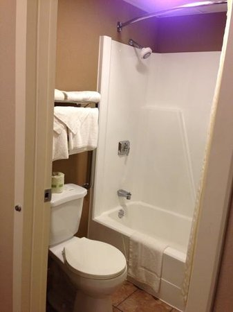 Comfort Inn: Small bathroom area
