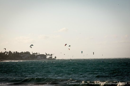Lax: The Kite Surfers