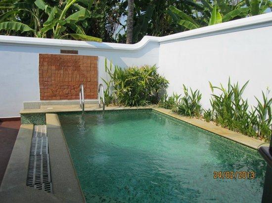 Heritage Villa With Private Pool Pool Picture Of Kumarakom Lake Resort Kumarakom