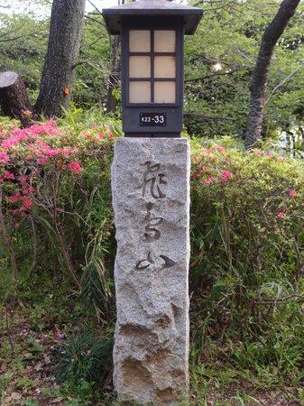Asukayama Park: 桜が終わるとツツジがお出迎え