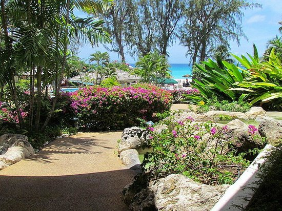 Bougainvillea Barbados: View from Lobby
