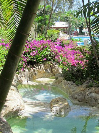 Bougainvillea Barbados: Gorgeous Grounds and Walkways