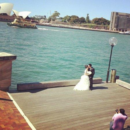 "Park Hyatt Sydney : You'll see this all day! ""-)"