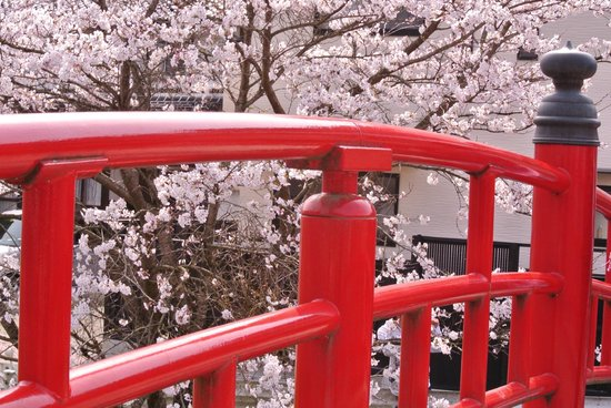 Tamatsukuriyu Shrine: Red vermilion bridge across from entrance