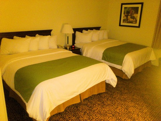 Napa Winery Inn: king size