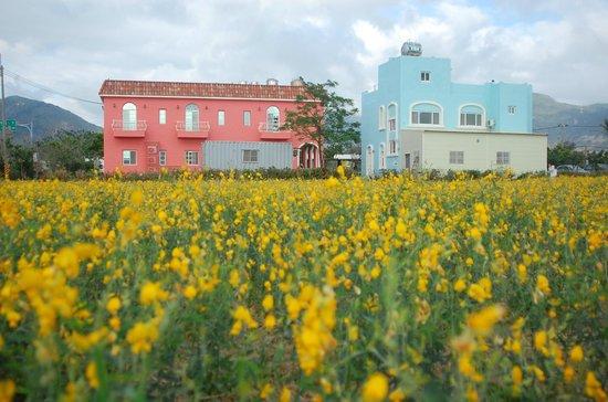 Avignon Hostel: 亞維儂莊園後院的花海