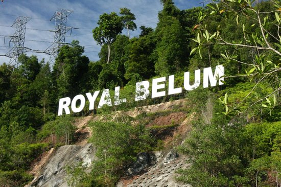 Belum Rainforest Resort: Royal Belum