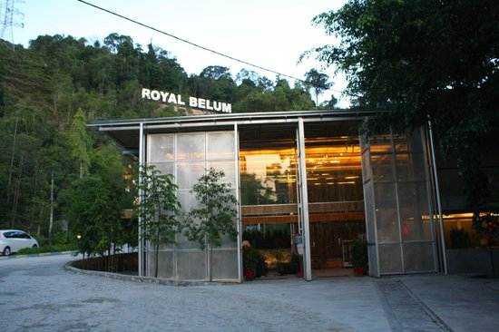 Belum Rainforest Resort: Hotel Reception