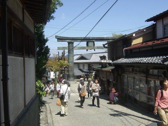 Mt. Yoshino: 銅の鳥居 下千本