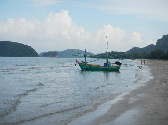 Dolphin Bay Resort: Beach