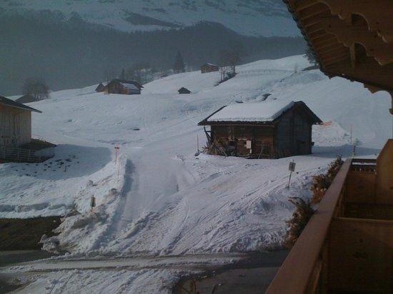 Aspen Alpin Lifestyle Hotel Grindelwald: Blick nach Süden auf 2 Skipisten