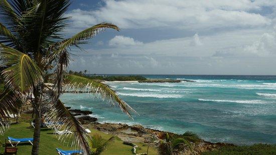 Ocean Spray Beach Apartments: Aussicht Zimmer