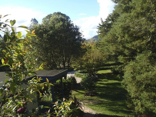 Tall Trees Bed & Breakfast: View from tree house balcony
