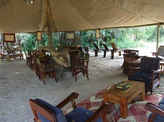 Pioneers Camp: Main area