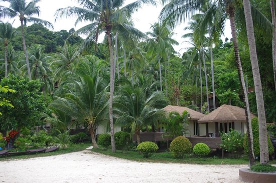 Koh Ngai Resort: bungalow