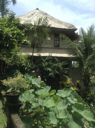 Alam Jiwa: The Villa