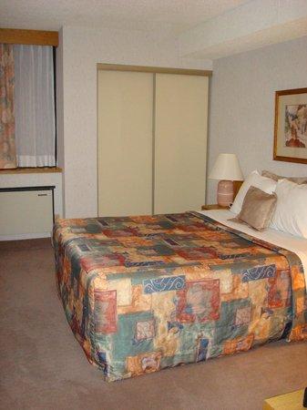 Cartier Place Suite Hotel: camera grande
