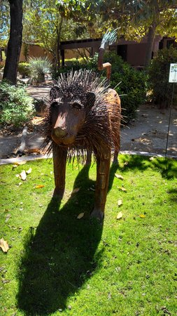 Canyon Ranch in Tucson: One of the interesting (nonsequitor) animal statues all around the property
