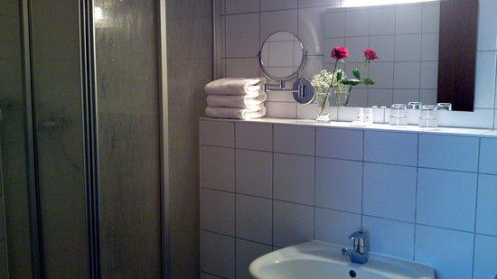 Burg Hotel Ziesar: Bad mit Dusche