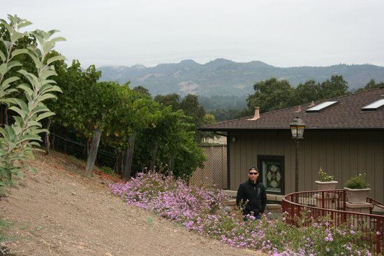 Wine Country Inn & Cottages: Beautiful Landscape