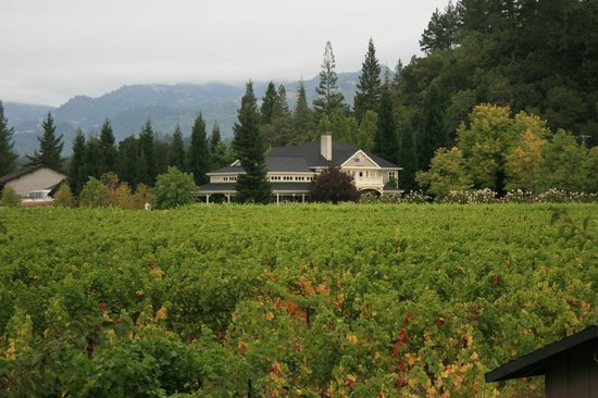 Wine Country Inn & Cottages: Duckhorn Winery is less than a half mile down the road from the Inn!