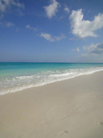 Inn at Grace Bay: beach