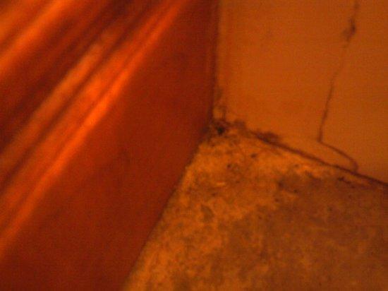 Westgate Smoky Mountain Resort & Spa: floor in bathroom