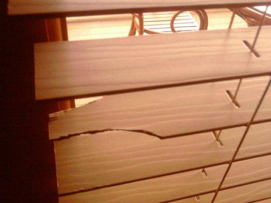 Westgate Smoky Mountain Resort & Spa: broken blinds