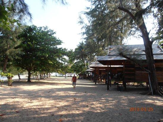 Island View Cabana: beach with bungalows