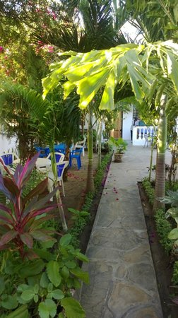 Punda Milia Paradise Bar and Restaurant: Welcome !
